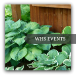 WHS Events